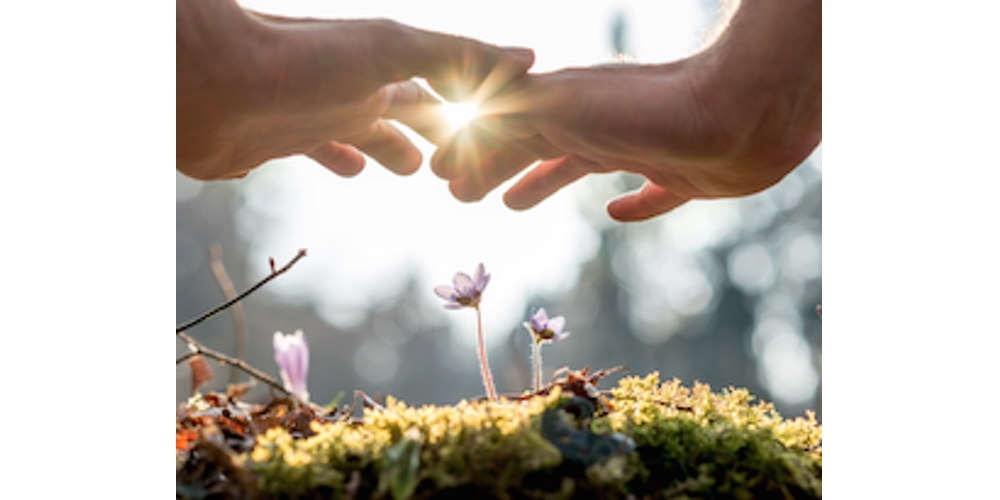 5 Tips to Intuitive Healing - Judith Orloff MD